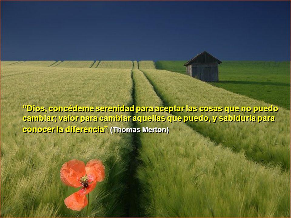 Dios, concédeme serenidad para aceptar las cosas que no puedo cambiar; valor para cambiar aquellas que puedo, y sabiduría para conocer la diferencia (Thomas Merton)