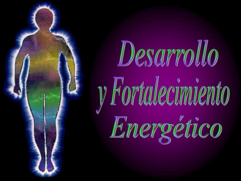 Desarrollo y Fortalecimiento Energético