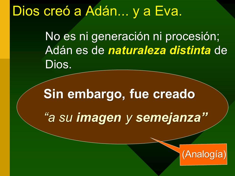Dios creó a Adán... y a Eva. Sin embargo, fue creado