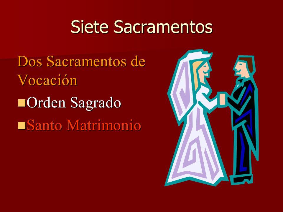 Siete Sacramentos Dos Sacramentos de Vocación Orden Sagrado