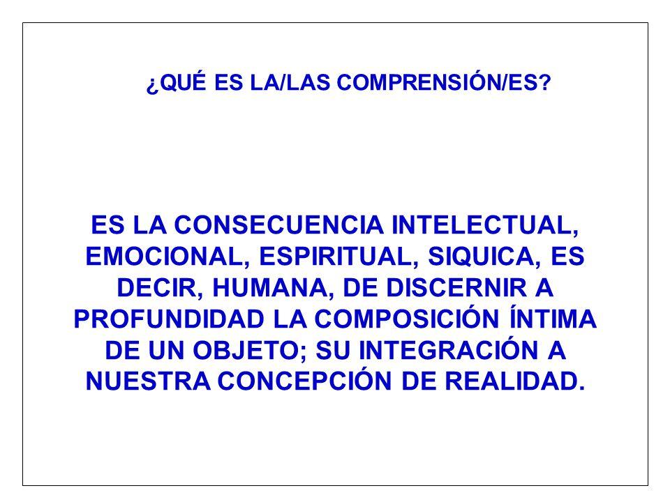 ¿QUÉ ES LA/LAS COMPRENSIÓN/ES