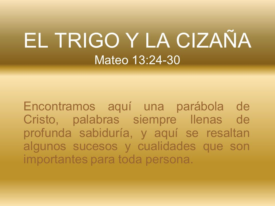 EL TRIGO Y LA CIZAÑA Mateo 13:24-30
