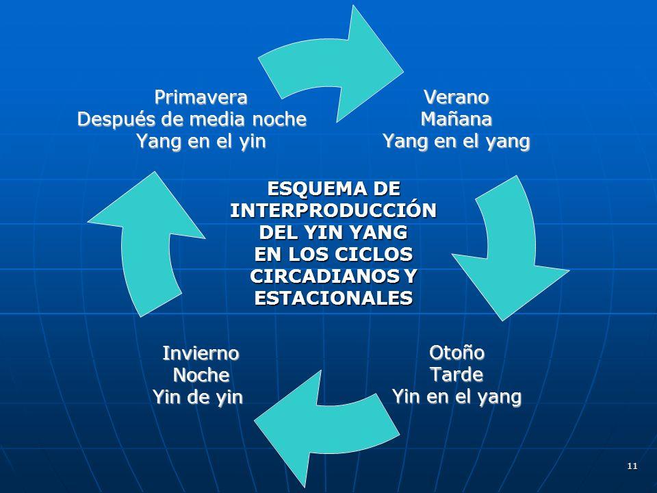 ESQUEMA DE INTERPRODUCCIÓN DEL YIN YANG