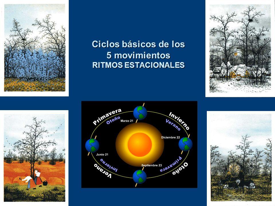 Ciclos básicos de los 5 movimientos RITMOS ESTACIONALES