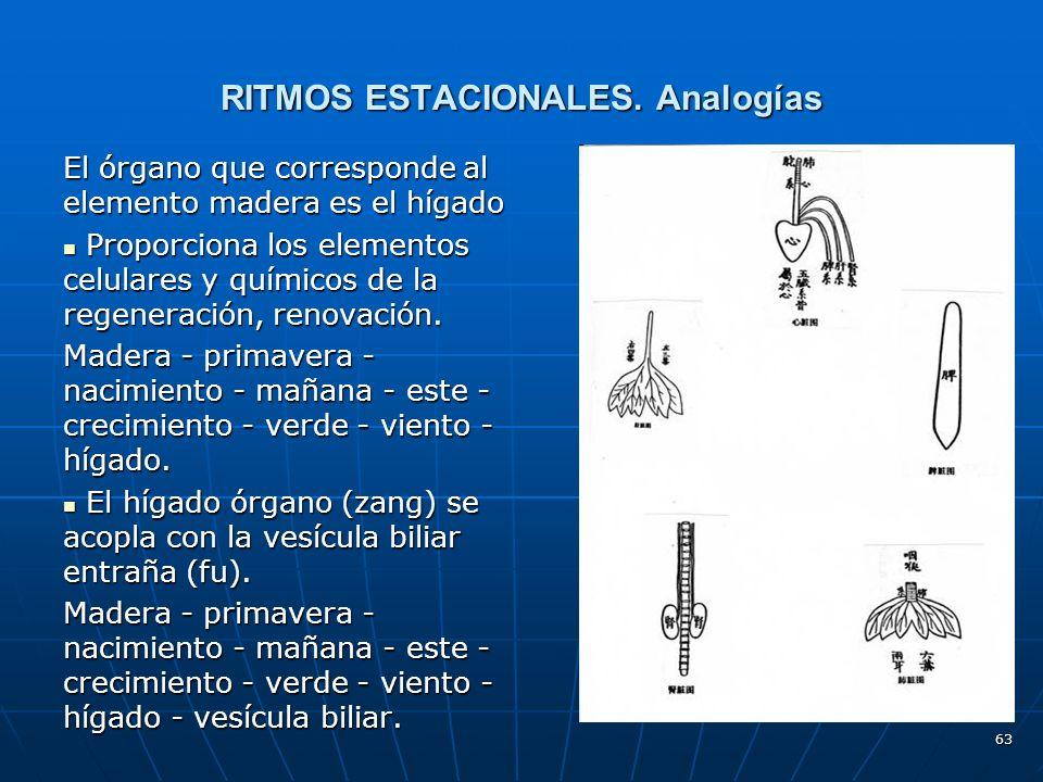 RITMOS ESTACIONALES. Analogías