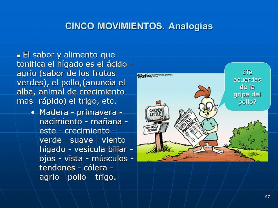 CINCO MOVIMIENTOS. Analogías