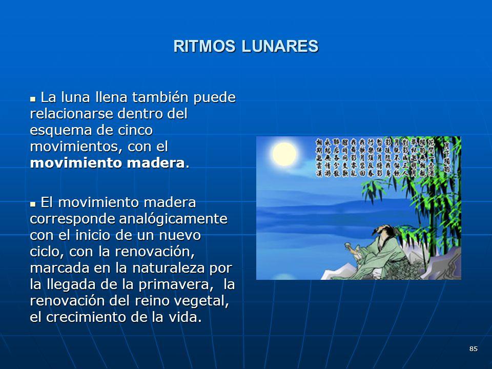 RITMOS LUNARES La luna llena también puede relacionarse dentro del esquema de cinco movimientos, con el movimiento madera.