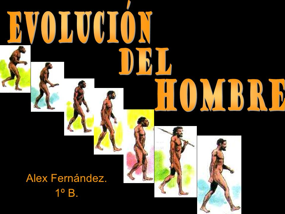 Evolución del HOMBRE Alex Fernández. 1º B.