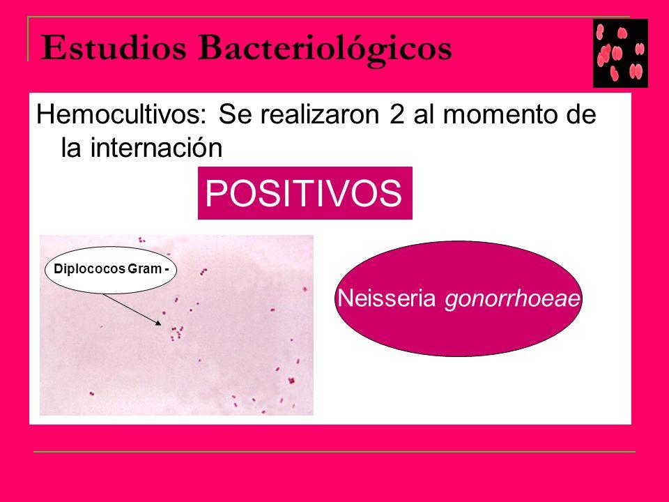 Estudios Bacteriológicos