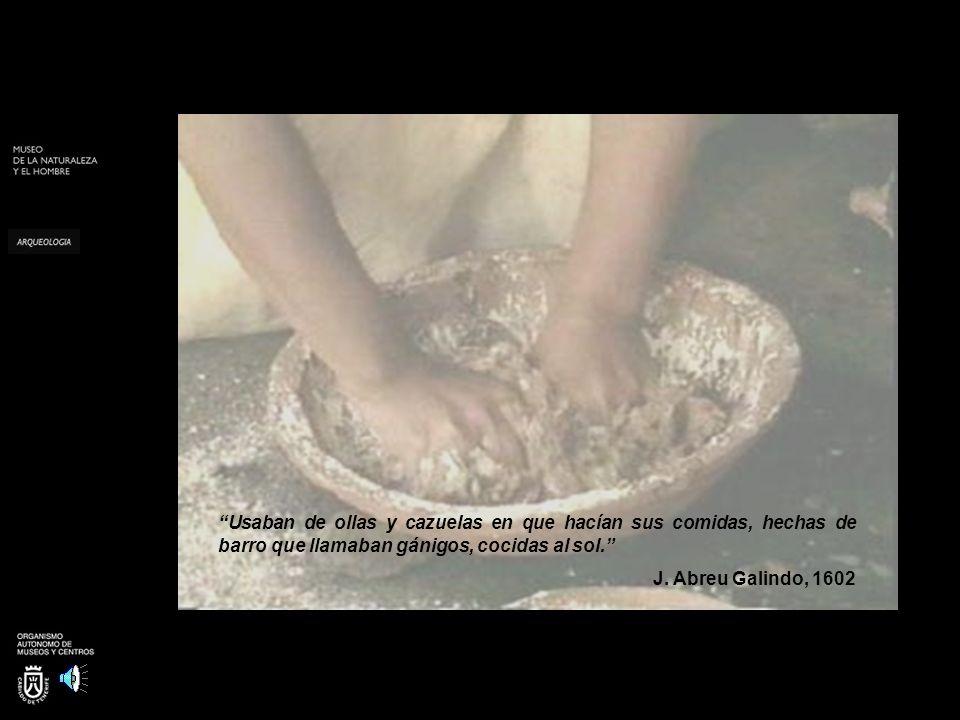 Usaban de ollas y cazuelas en que hacían sus comidas, hechas de barro que llamaban gánigos, cocidas al sol.