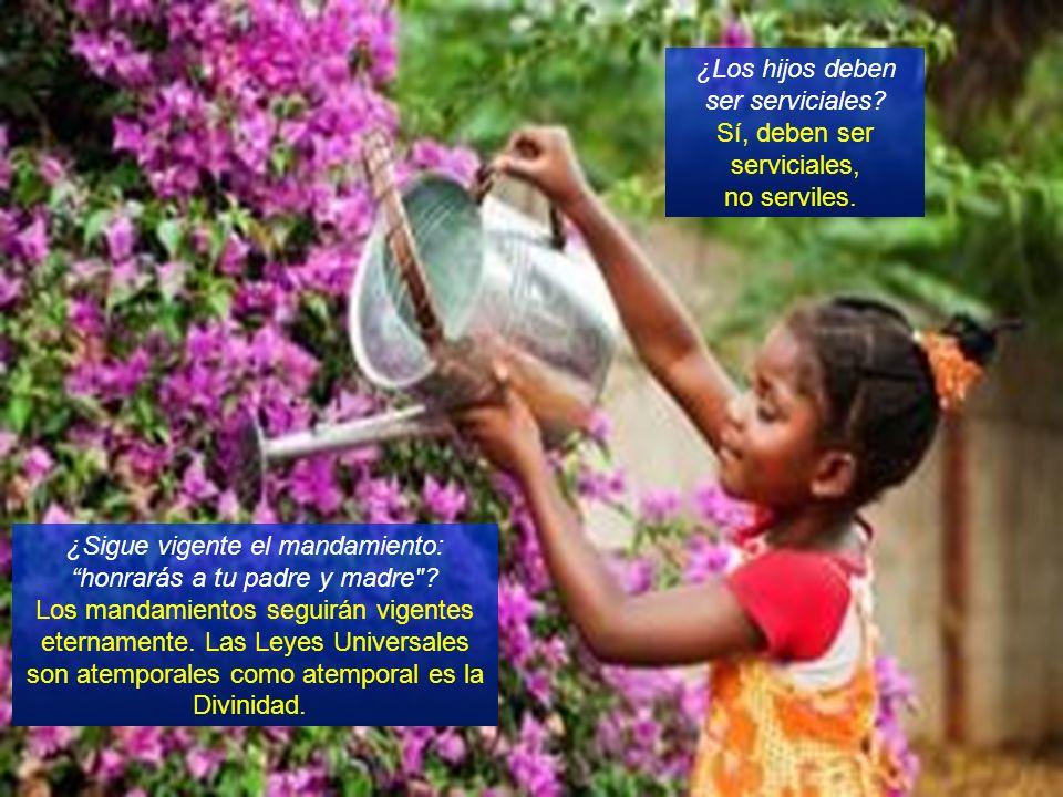 ¿Los hijos deben ser serviciales Sí, deben ser serviciales,