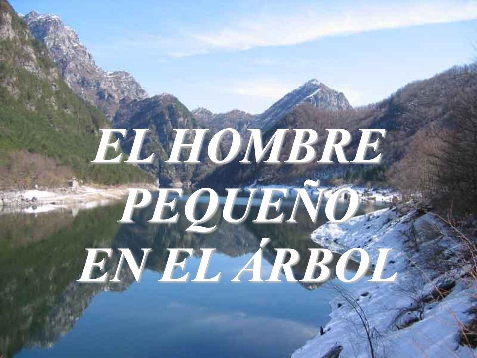 EL HOMBRE PEQUEÑO EN EL ÁRBOL