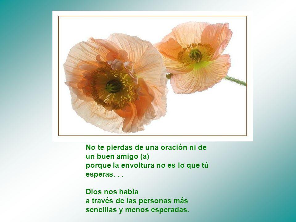 No te pierdas de una oración ni de un buen amigo (a) porque la envoltura no es lo que tú esperas.