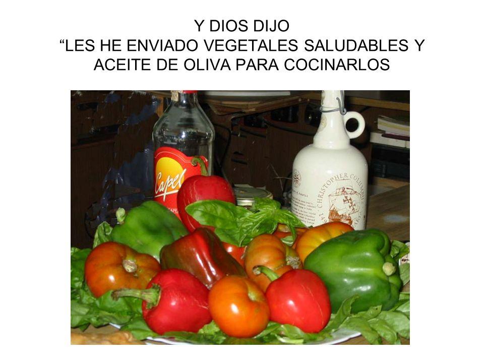 Y DIOS DIJO LES HE ENVIADO VEGETALES SALUDABLES Y ACEITE DE OLIVA PARA COCINARLOS