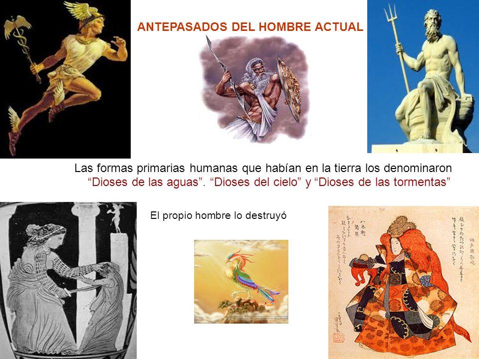 ANTEPASADOS DEL HOMBRE ACTUAL