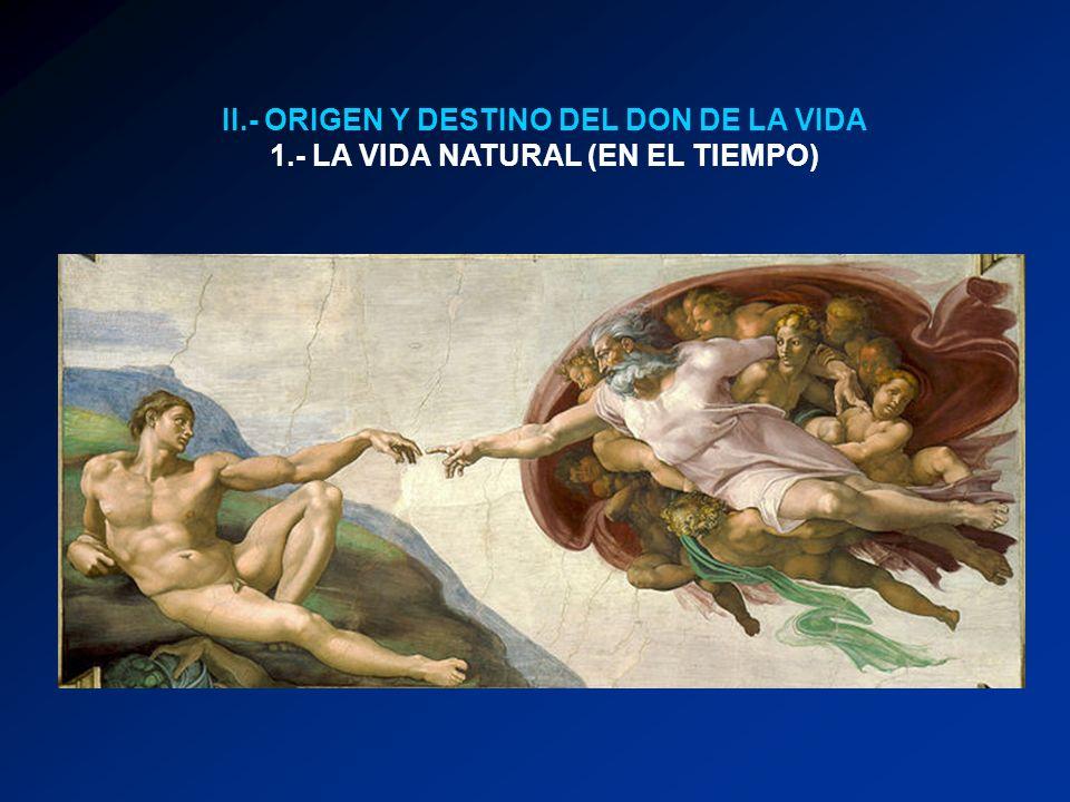 II.- ORIGEN Y DESTINO DEL DON DE LA VIDA