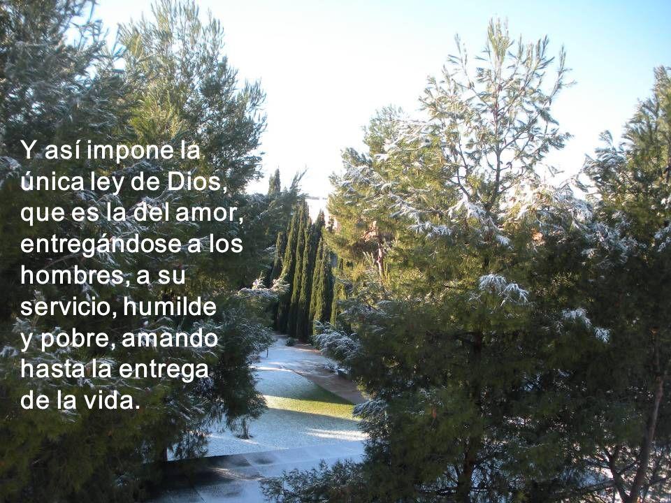 Y así impone laúnica ley de Dios, que es la del amor, entregándose a los hombres, a su servicio, humilde.