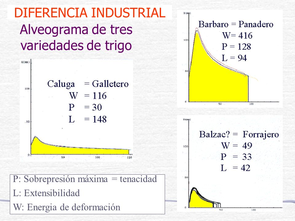 DIFERENCIA INDUSTRIAL Alveograma de tres variedades de trigo