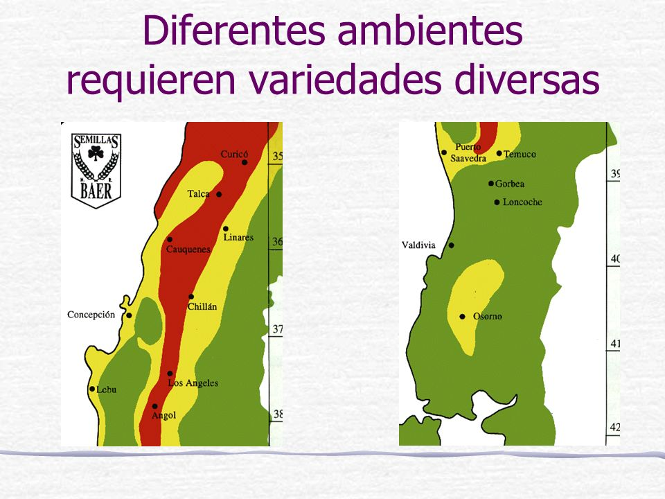Diferentes ambientes requieren variedades diversas