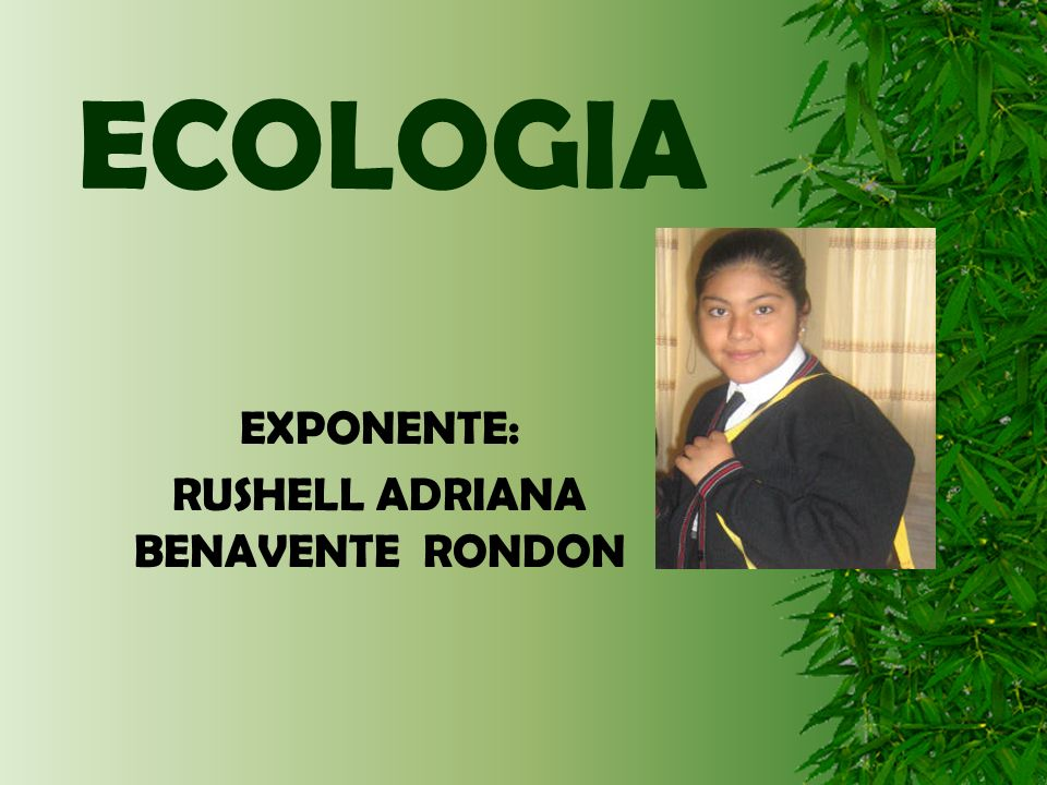 EXPONENTE: RUSHELL ADRIANA BENAVENTE RONDON