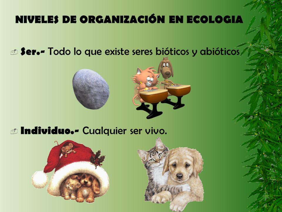 NIVELES DE ORGANIZACIÓN EN ECOLOGIA