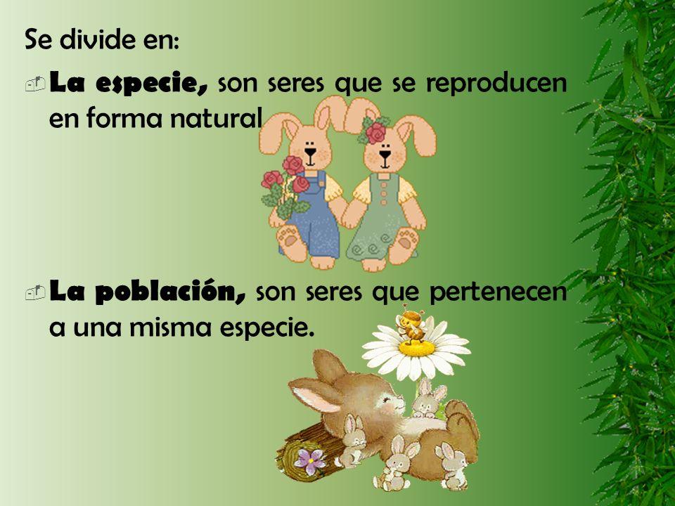 Se divide en: La especie, son seres que se reproducen en forma natural.