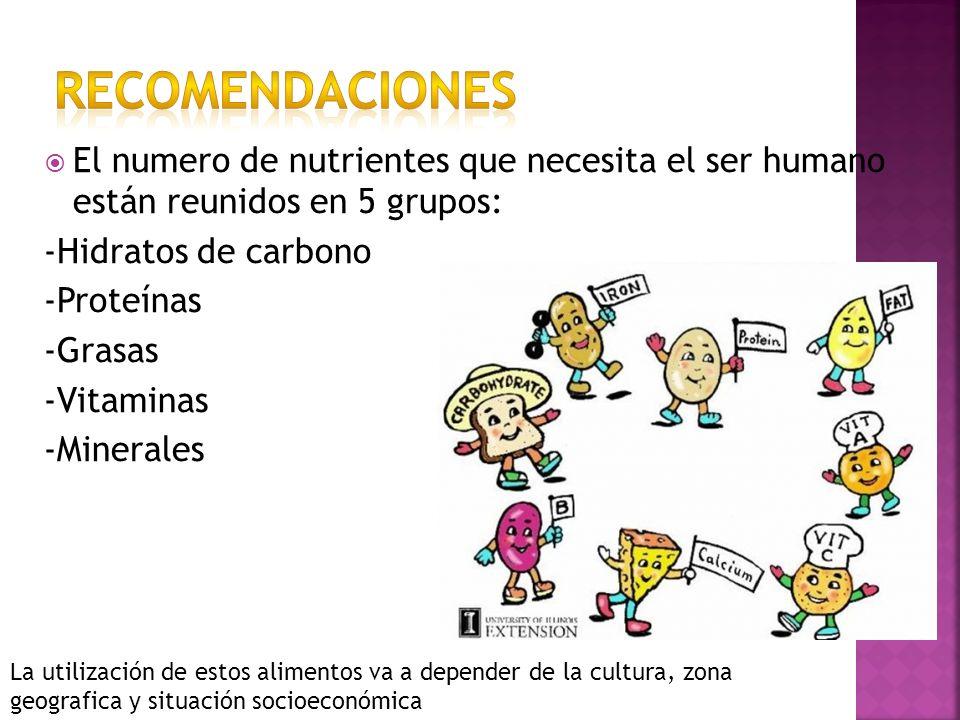 RECOMENDACIONESEl numero de nutrientes que necesita el ser humano están reunidos en 5 grupos: -Hidratos de carbono.