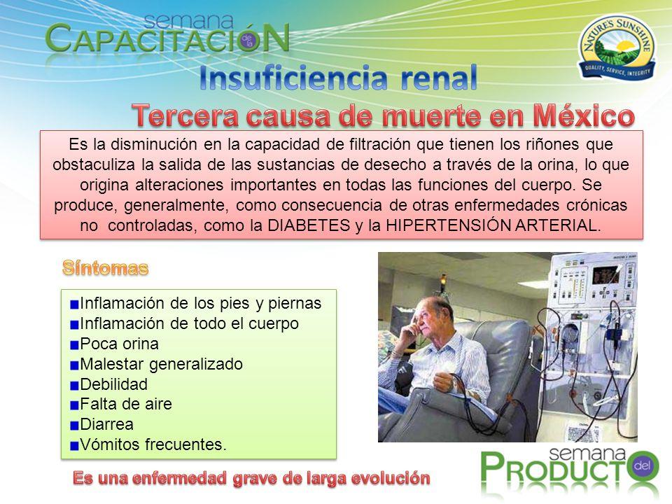 Insuficiencia renal Tercera causa de muerte en México Síntomas