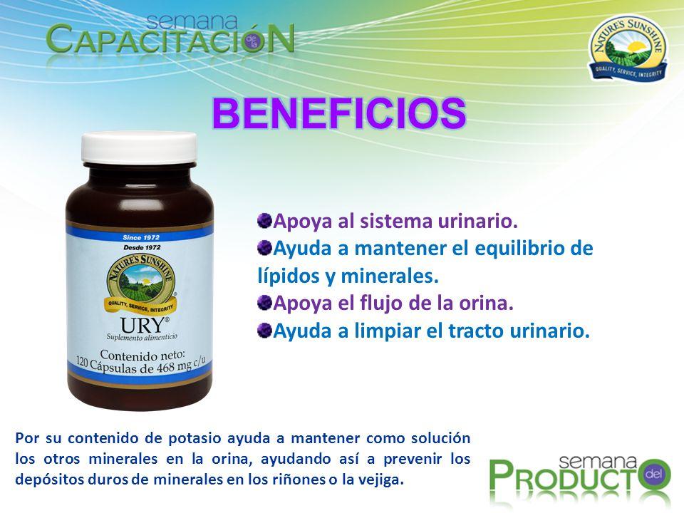 BENEFICIOS Apoya al sistema urinario.