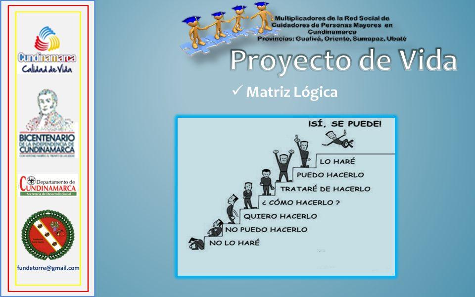 Proyecto de Vida Matriz Lógica