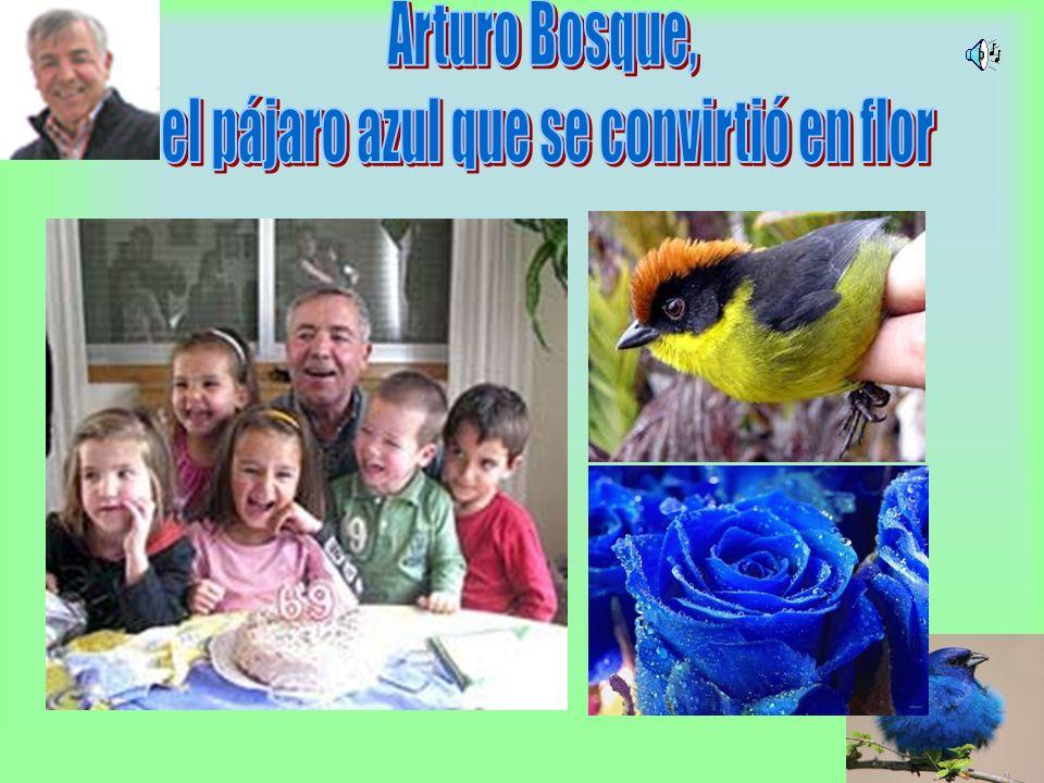 el pájaro azul que se convirtió en flor
