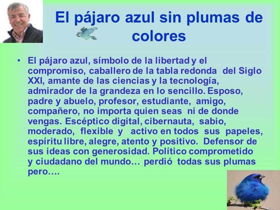 El pájaro azul sin plumas de colores