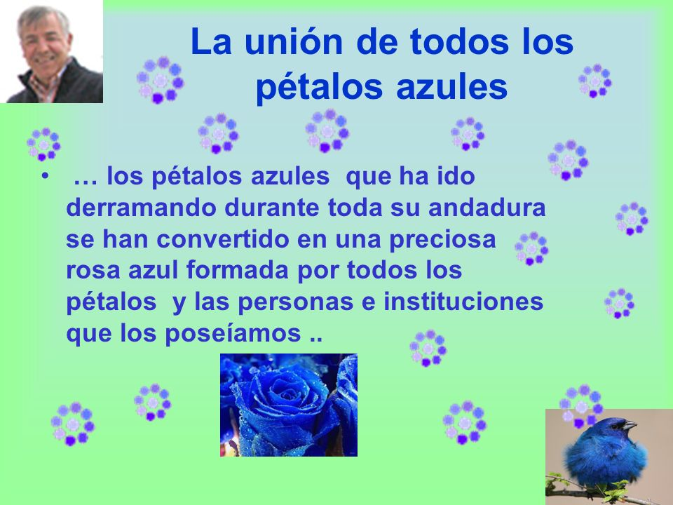 La unión de todos los pétalos azules