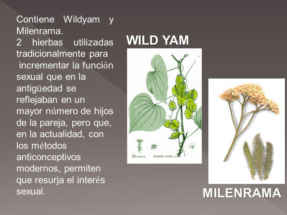 WILD YAM MILENRAMA Contiene Wildyam y Milenrama.