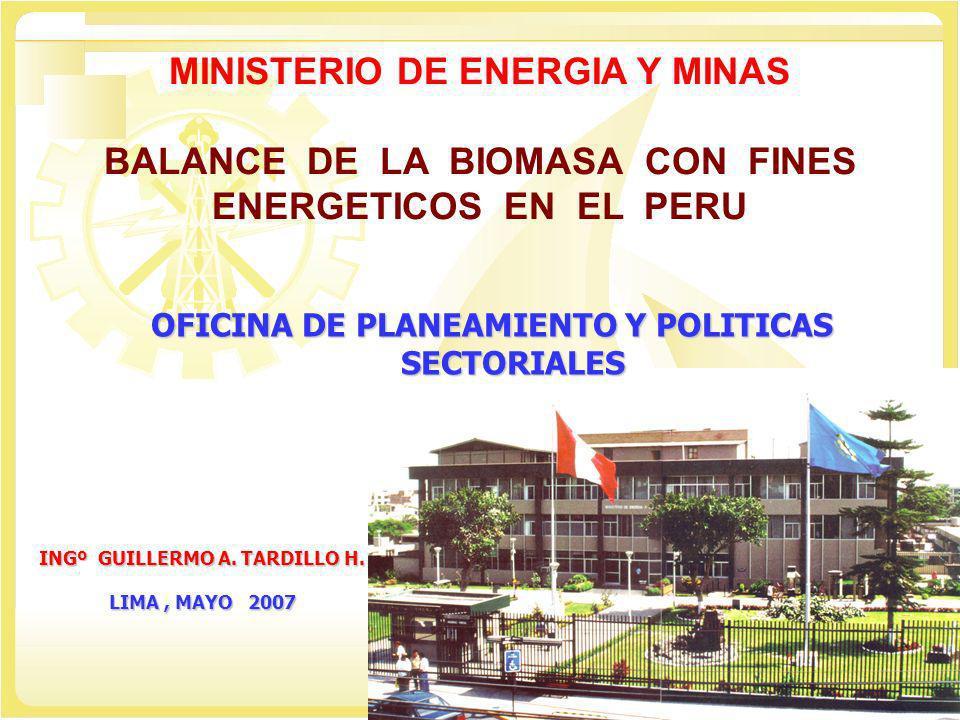 OFICINA DE PLANEAMIENTO Y POLITICAS SECTORIALES