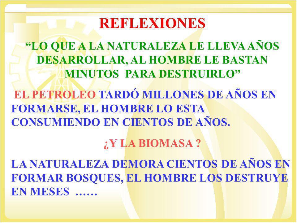 REFLEXIONES LO QUE A LA NATURALEZA LE LLEVA AÑOS DESARROLLAR, AL HOMBRE LE BASTAN MINUTOS PARA DESTRUIRLO