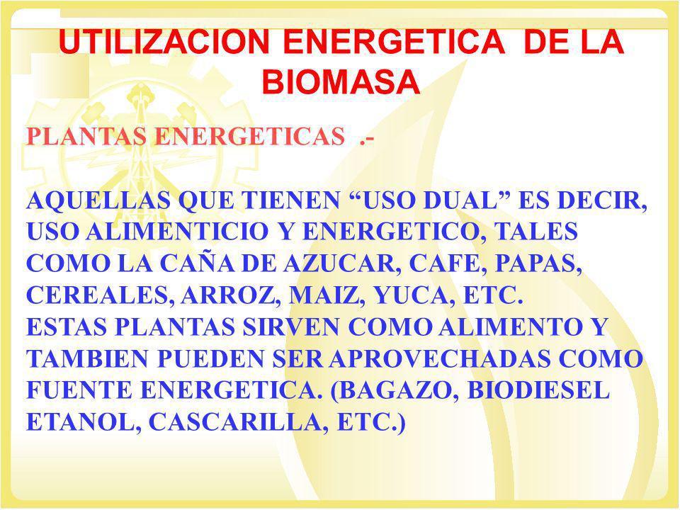 UTILIZACION ENERGETICA DE LA BIOMASA