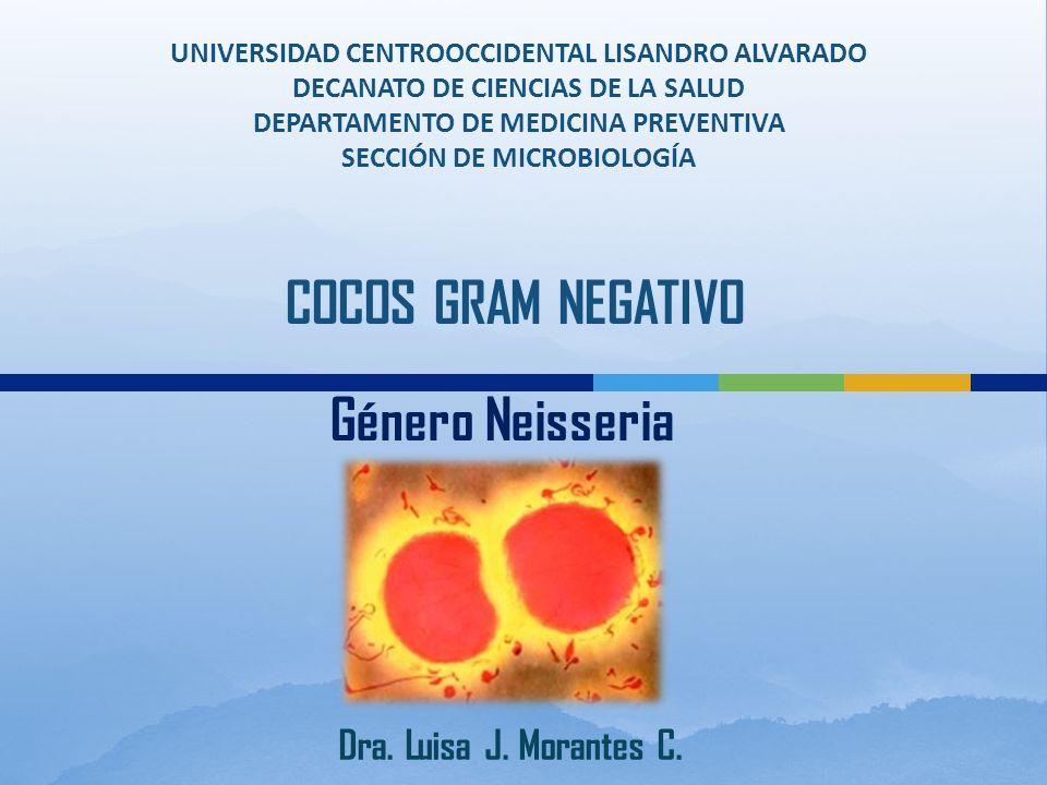 COCOS GRAM NEGATIVO Género Neisseria