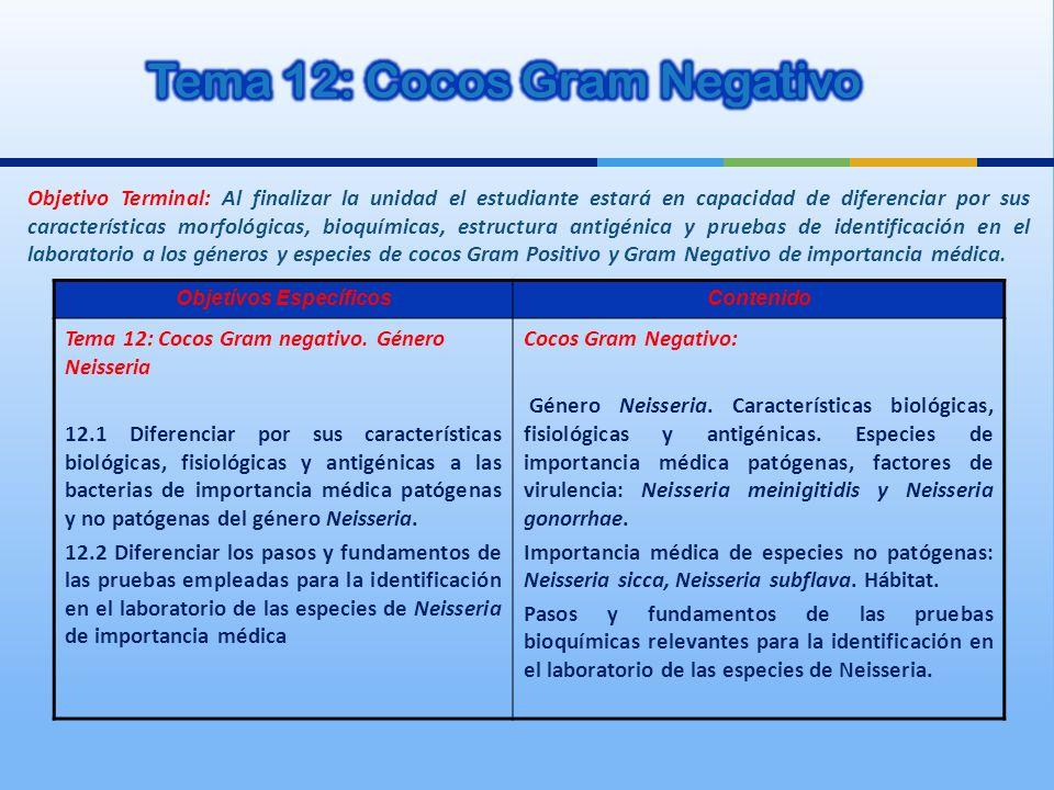 Tema 12: Cocos Gram Negativo