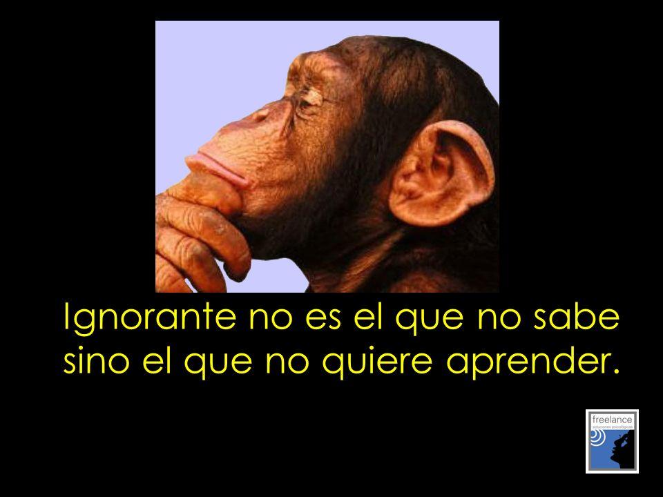 Ignorante no es el que no sabe sino el que no quiere aprender.