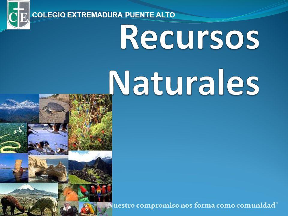 Recursos Naturales COLEGIO EXTREMADURA PUENTE ALTO