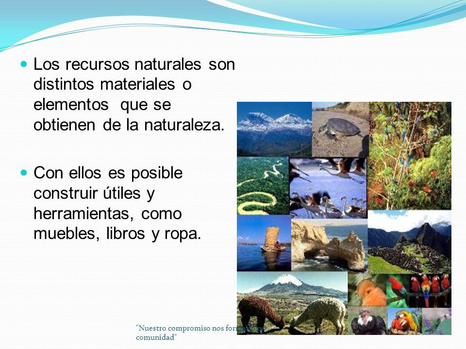 Los recursos naturales son distintos materiales o elementos que se obtienen de la naturaleza.