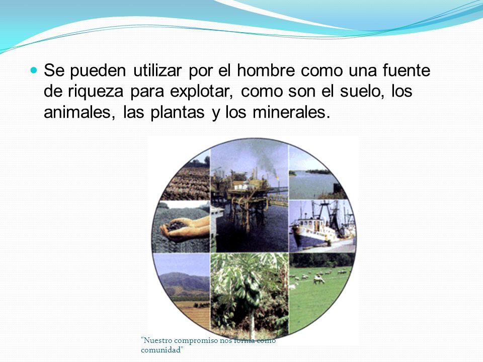 Se pueden utilizar por el hombre como una fuente de riqueza para explotar, como son el suelo, los animales, las plantas y los minerales.