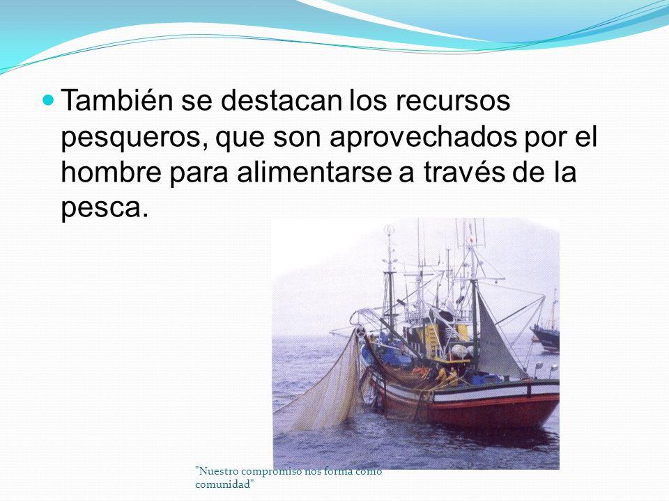También se destacan los recursos pesqueros, que son aprovechados por el hombre para alimentarse a través de la pesca.