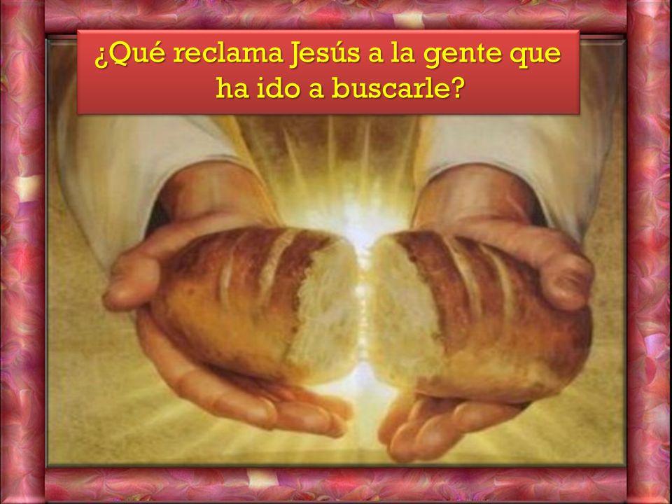 ¿Qué reclama Jesús a la gente que ha ido a buscarle