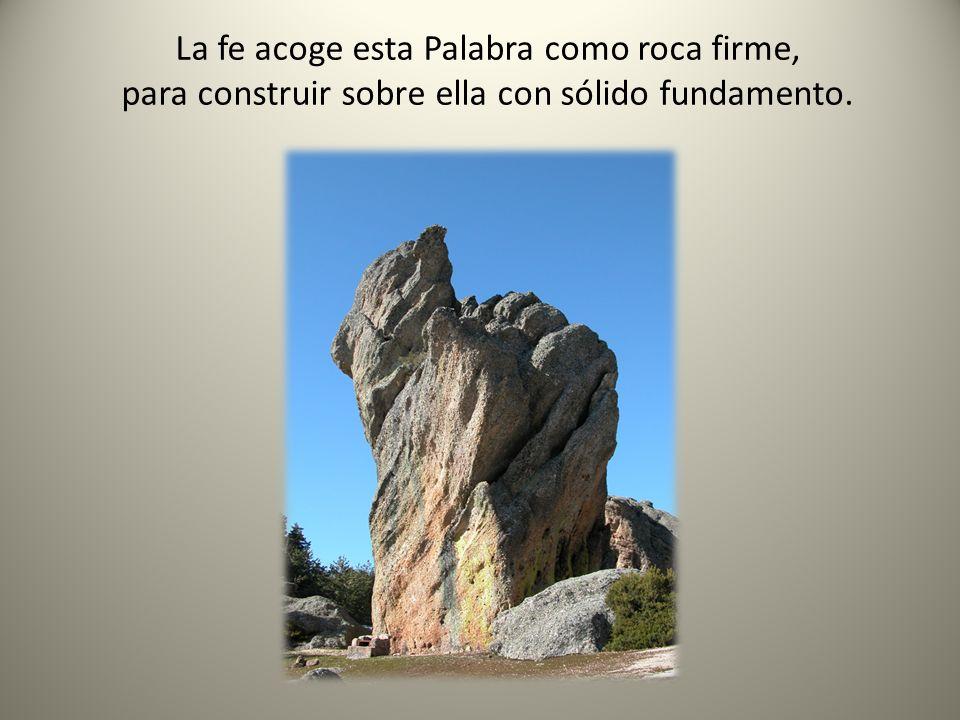La fe acoge esta Palabra como roca firme,