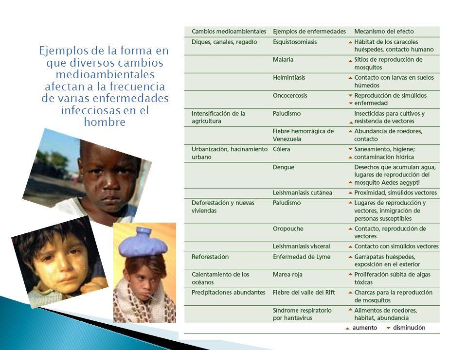 Ejemplos de la forma en que diversos cambios medioambientales afectan a la frecuencia de varias enfermedades infecciosas en el hombre