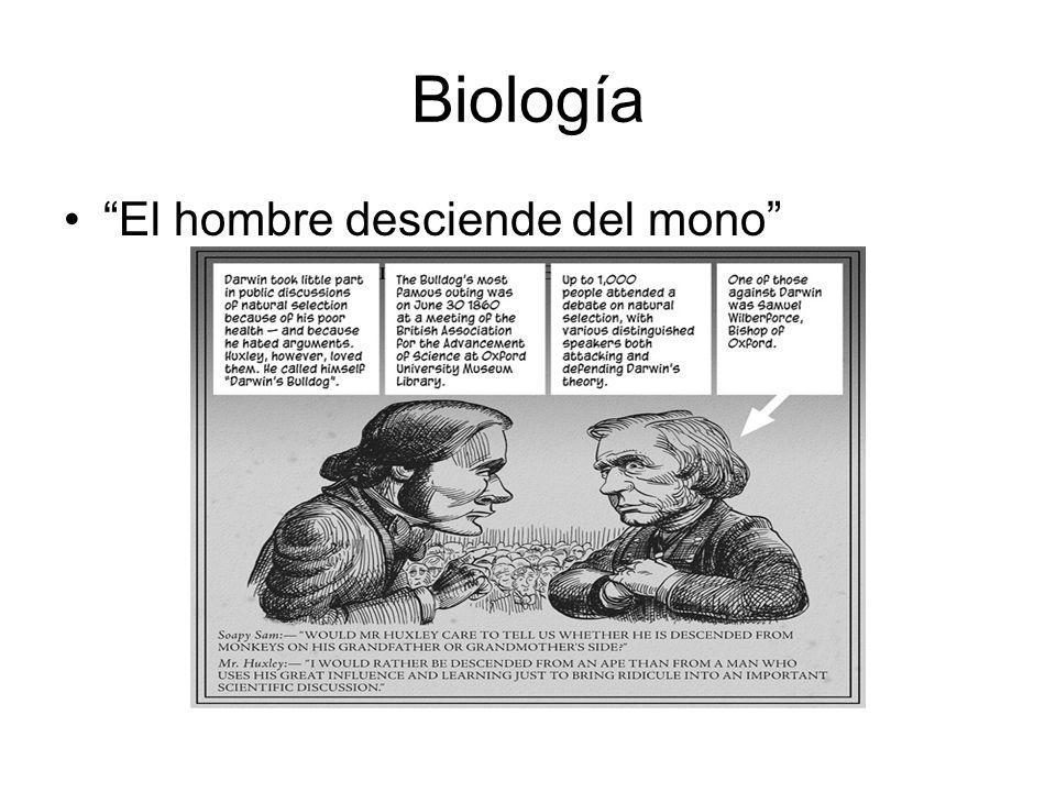Biología El hombre desciende del mono