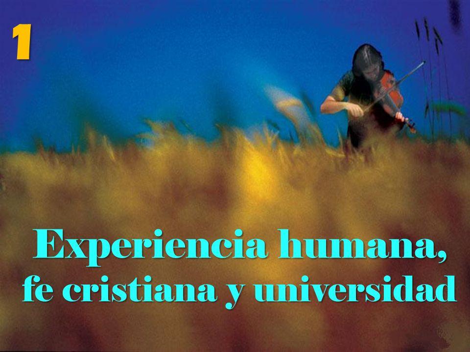 fe cristiana y universidad