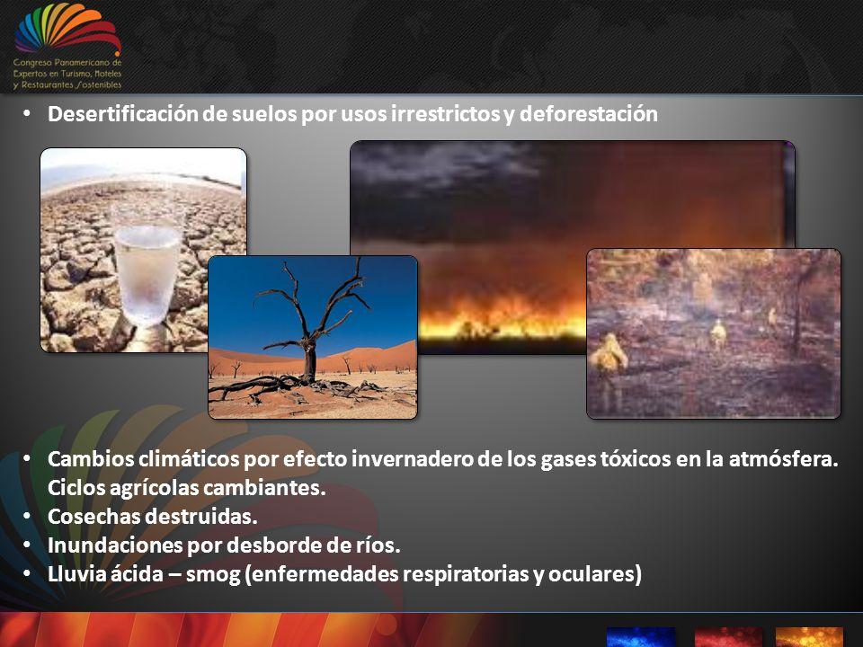Desertificación de suelos por usos irrestrictos y deforestación